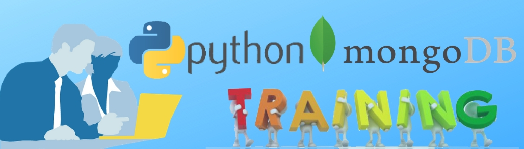 python with mongoDB training in delhi